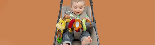 Rattles & First Toys